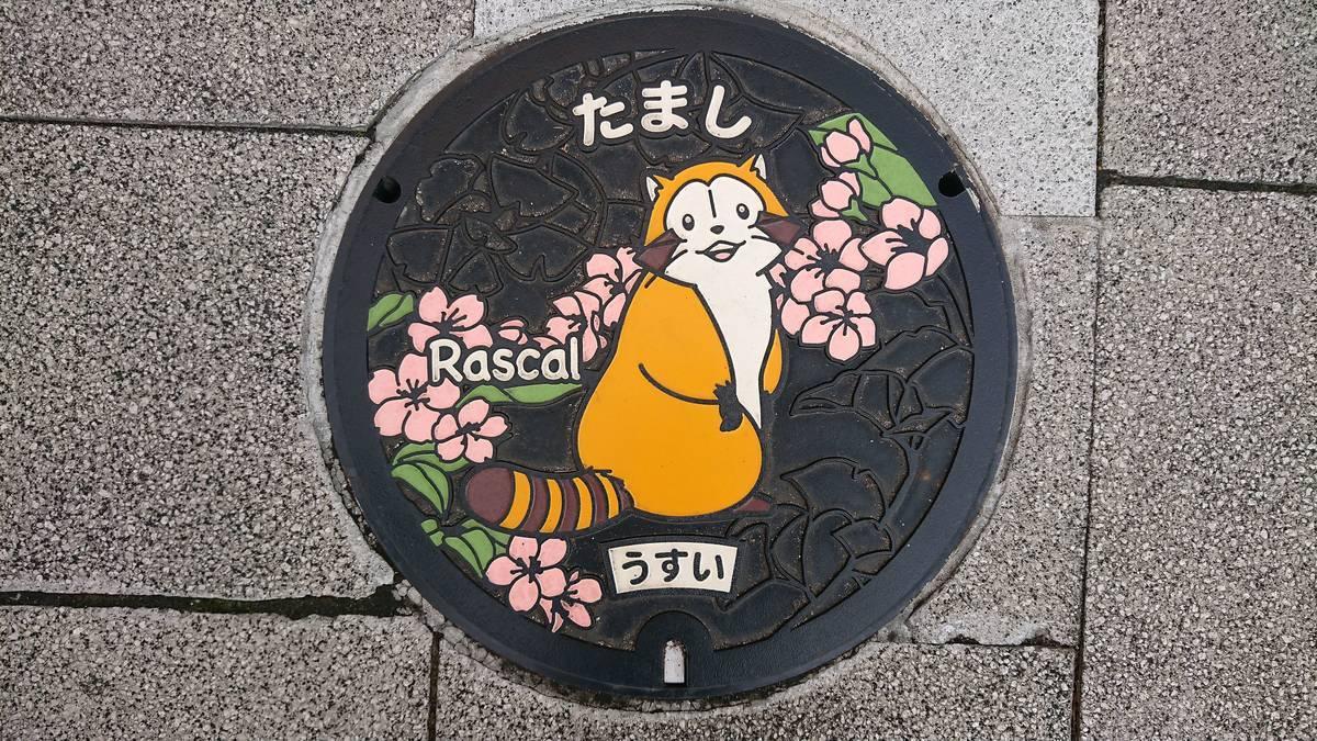 東京都多摩市のマンホール(あらいぐまラスカル、ヤマザクラ、イチョウ)[カラー]