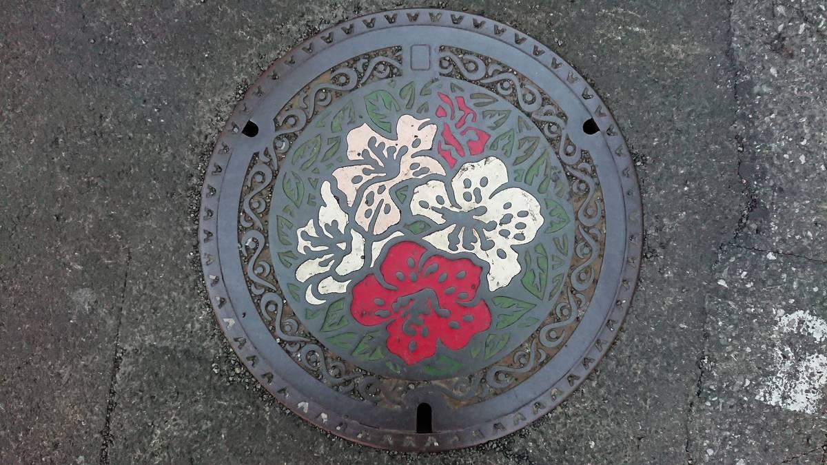 東京都国分寺市のマンホール(サツキ、軒先瓦)[カラー]