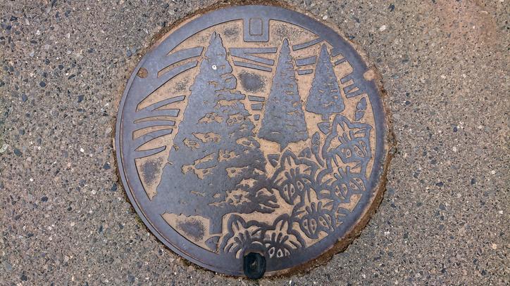 長野県東筑摩郡山形村のマンホール(イチイ、サツキ)