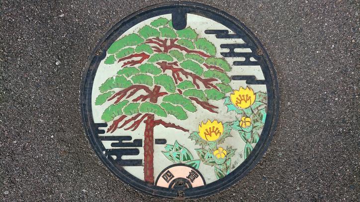 長野県松本市のマンホール(旧四賀村、アカマツ、福寿草)[カラー]