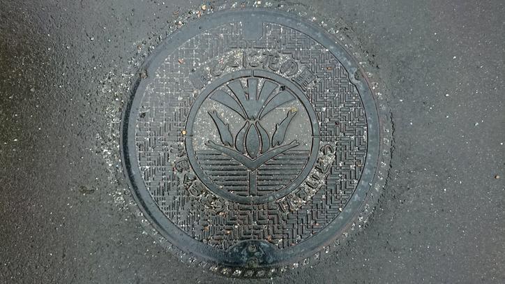 山形県西村山郡河北町のマンホール(紅花)
