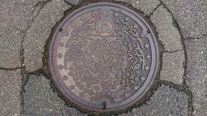 山形県東田川郡三川町のマンホール(ケヤキ、菜の花)
