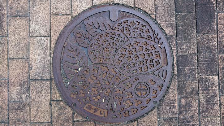 福井県三方上中郡若狭町のマンホール(旧上中町、アジサイ)