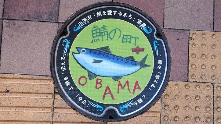福井県小浜市のマンホール(鯖)[カラーシール]