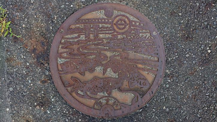 兵庫県養父市のマンホール(旧養父町、円山川、錦鯉)