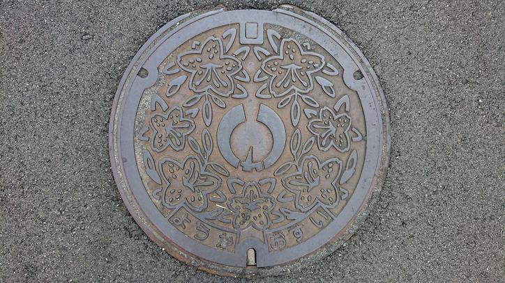 兵庫県養父市のマンホール(旧関宮町、ドウダンツツジ、 鉢伏高原)