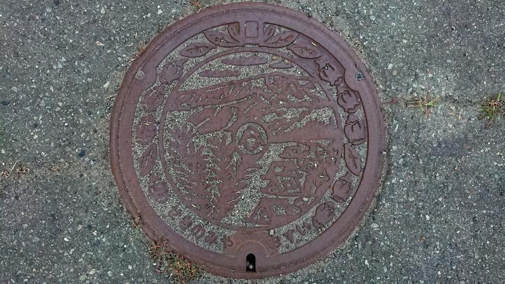 兵庫県養父市のマンホール(旧八鹿町、ツツジ)