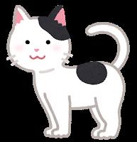 f:id:gootimizu:20201226171948p:plain