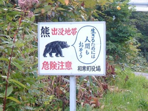 f:id:gorilla-boots:20140512174255j:image