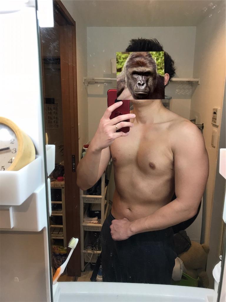 f:id:gorillakozeki:20190105223427j:image