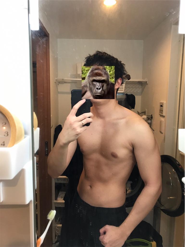 f:id:gorillakozeki:20190126135701j:image