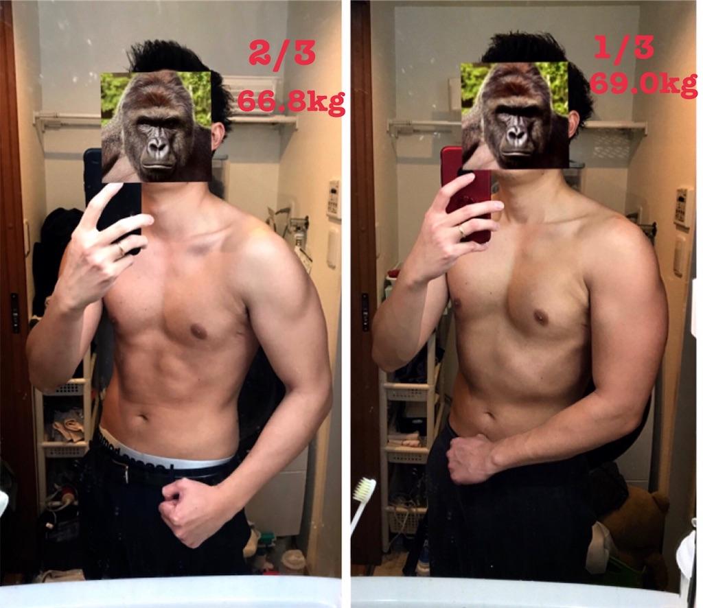 f:id:gorillakozeki:20190204213304j:image