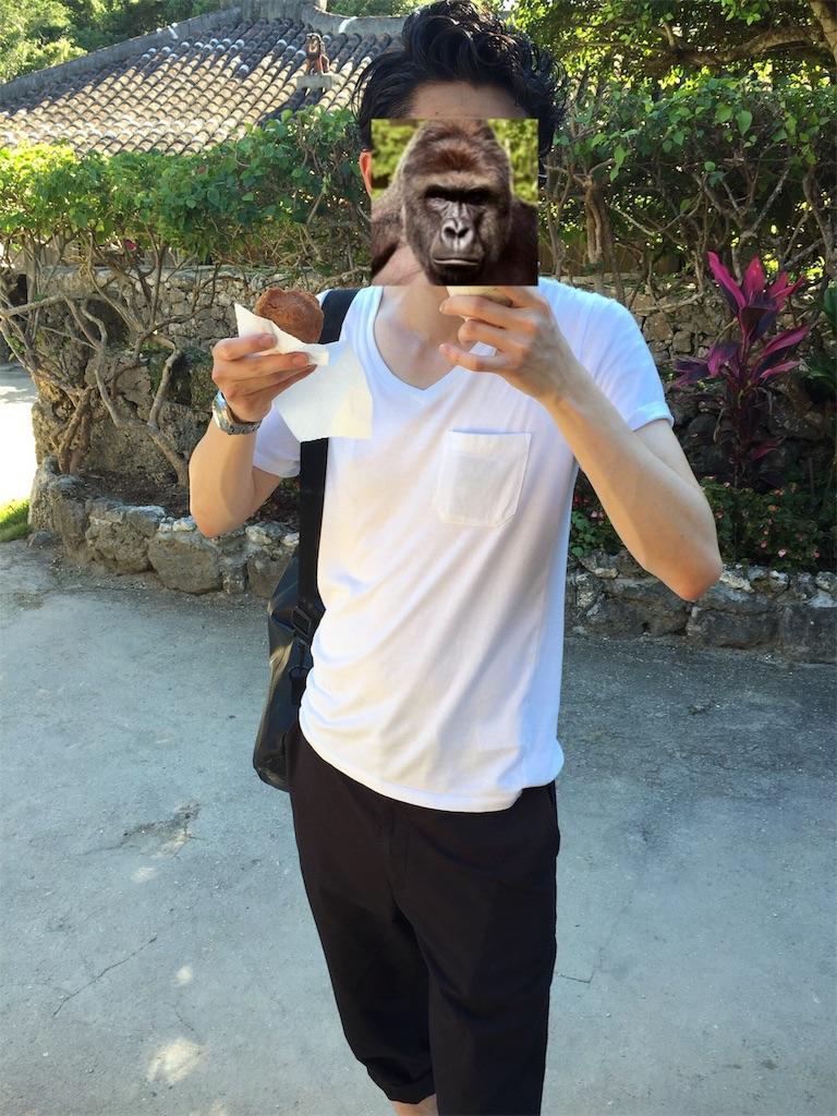 f:id:gorillakozeki:20190212180042j:image