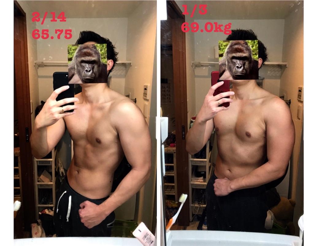 f:id:gorillakozeki:20190214204633j:image