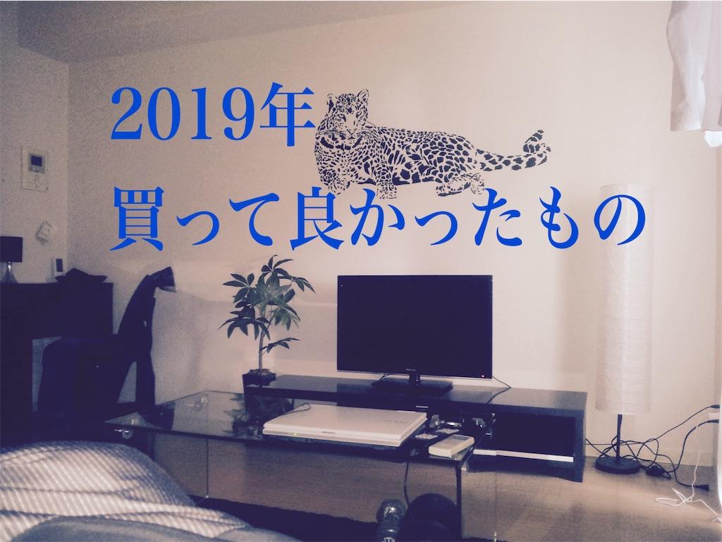 f:id:gorillakozeki:20200103171616j:image