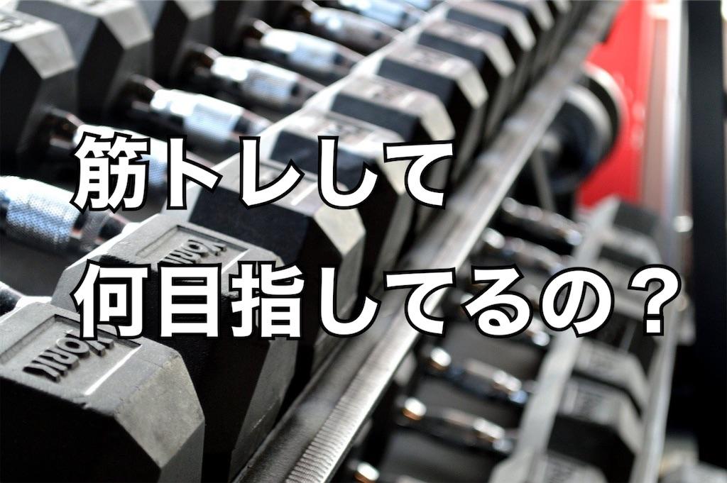 f:id:gorillakozeki:20210420113306j:image