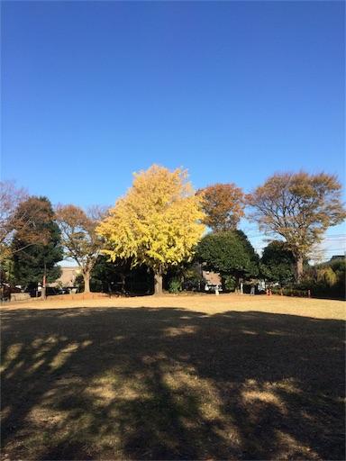 f:id:gorinosuke:20171210081316j:image