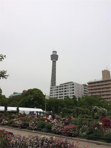 f:id:gorinosuke:20180527082948j:image