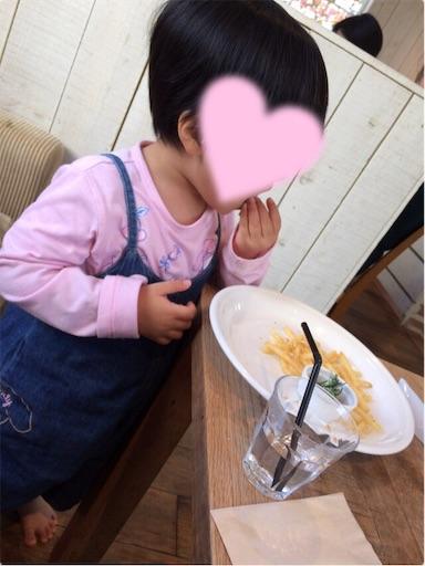 f:id:gorinosuke:20190203154334j:image