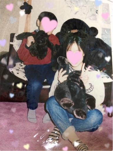 f:id:gorinosuke:20190210091722j:image