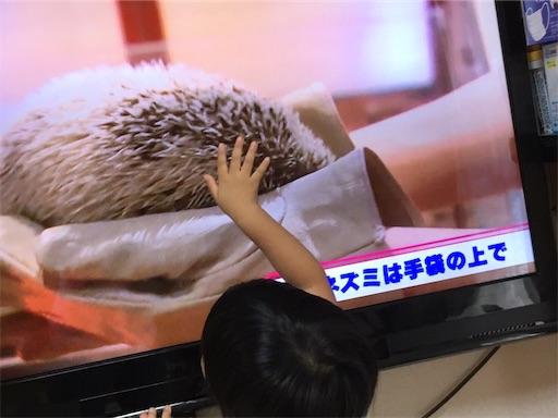 f:id:gorinosuke:20190530122859j:image
