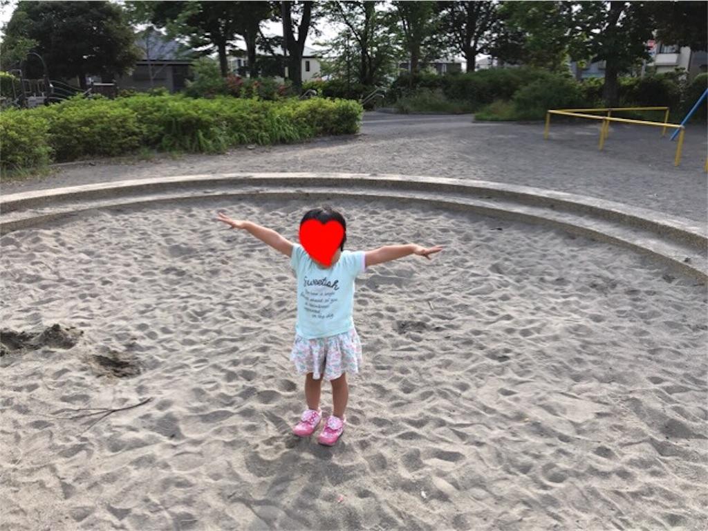 f:id:gorinosuke:20190608060243j:image