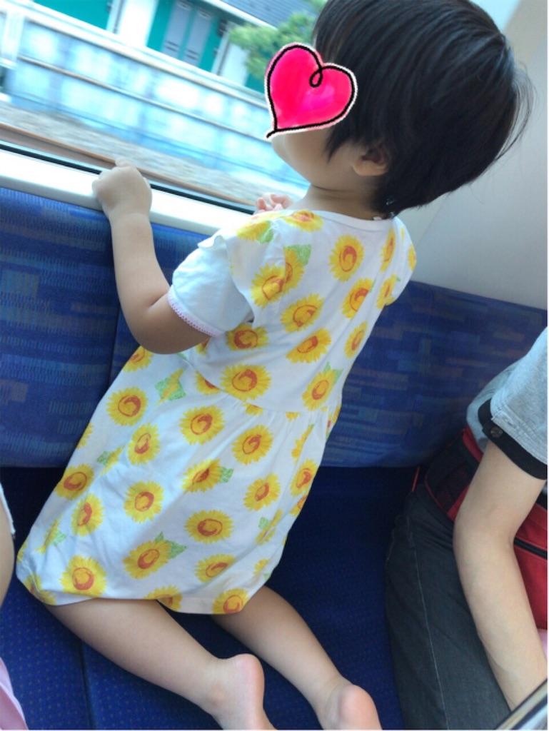 f:id:gorinosuke:20190608192856j:image
