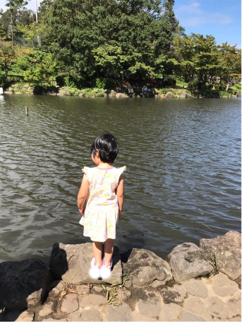 f:id:gorinosuke:20190916123523j:image