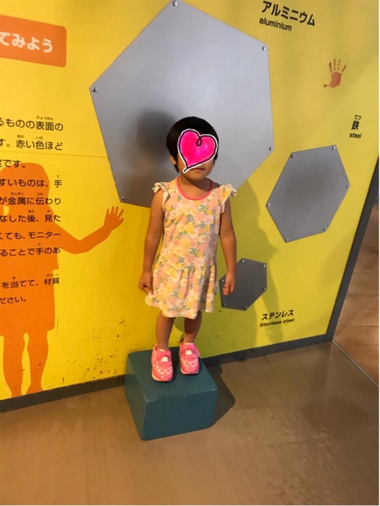 f:id:gorinosuke:20191006195229j:image