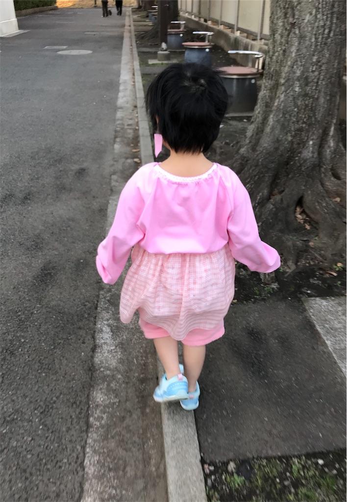 f:id:gorinosuke:20200131085925j:image