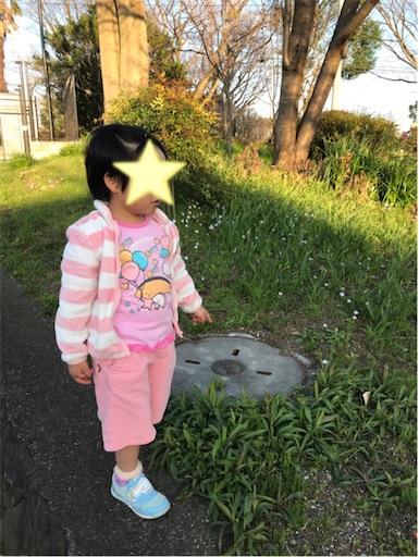 f:id:gorinosuke:20200325201207j:image