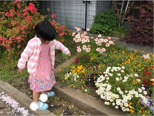 f:id:gorinosuke:20200405153518j:image