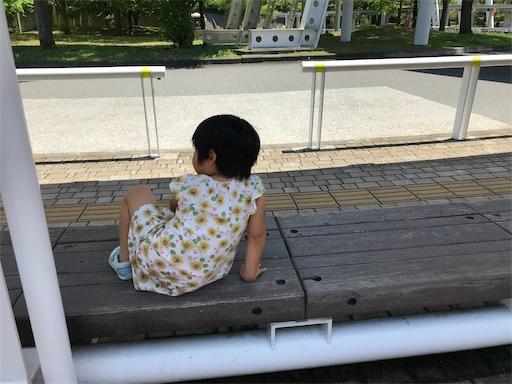 f:id:gorinosuke:20200623122618j:plain