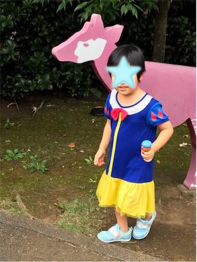 f:id:gorinosuke:20200920140356j:plain