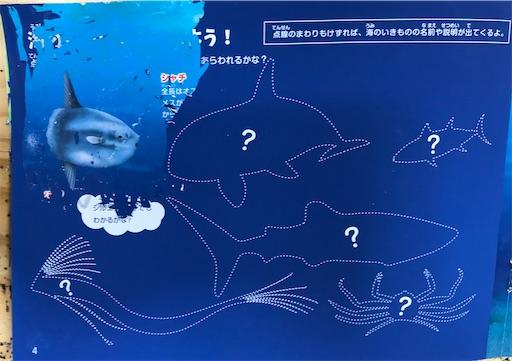 f:id:gorinosuke:20200924201117j:plain