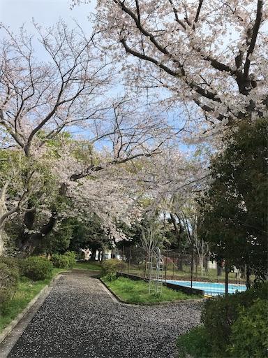 f:id:gorinosuke:20210404194028j:plain