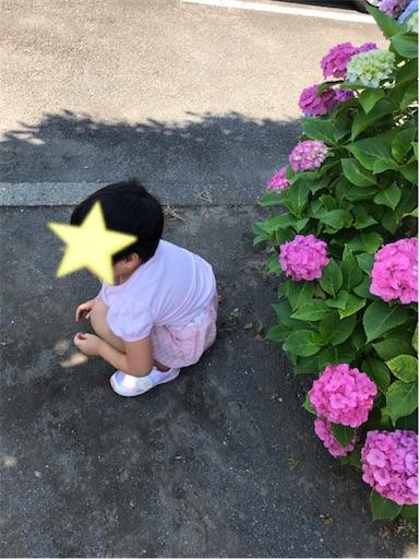f:id:gorinosuke:20210614214836j:plain