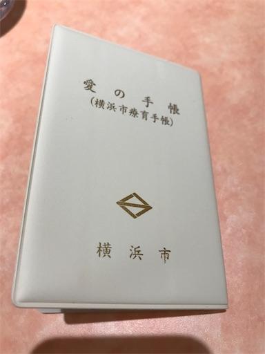 f:id:gorinosuke:20210615160513j:plain