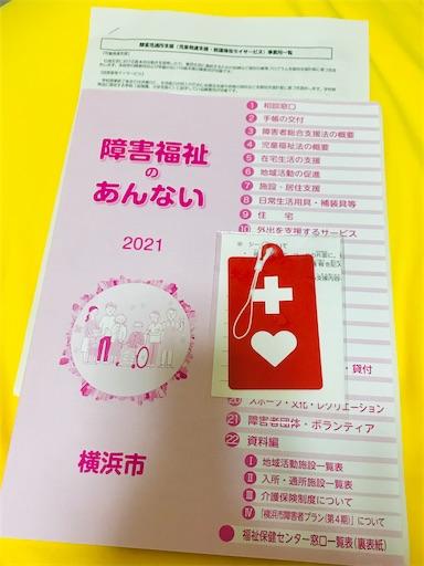 f:id:gorinosuke:20210615160516j:plain