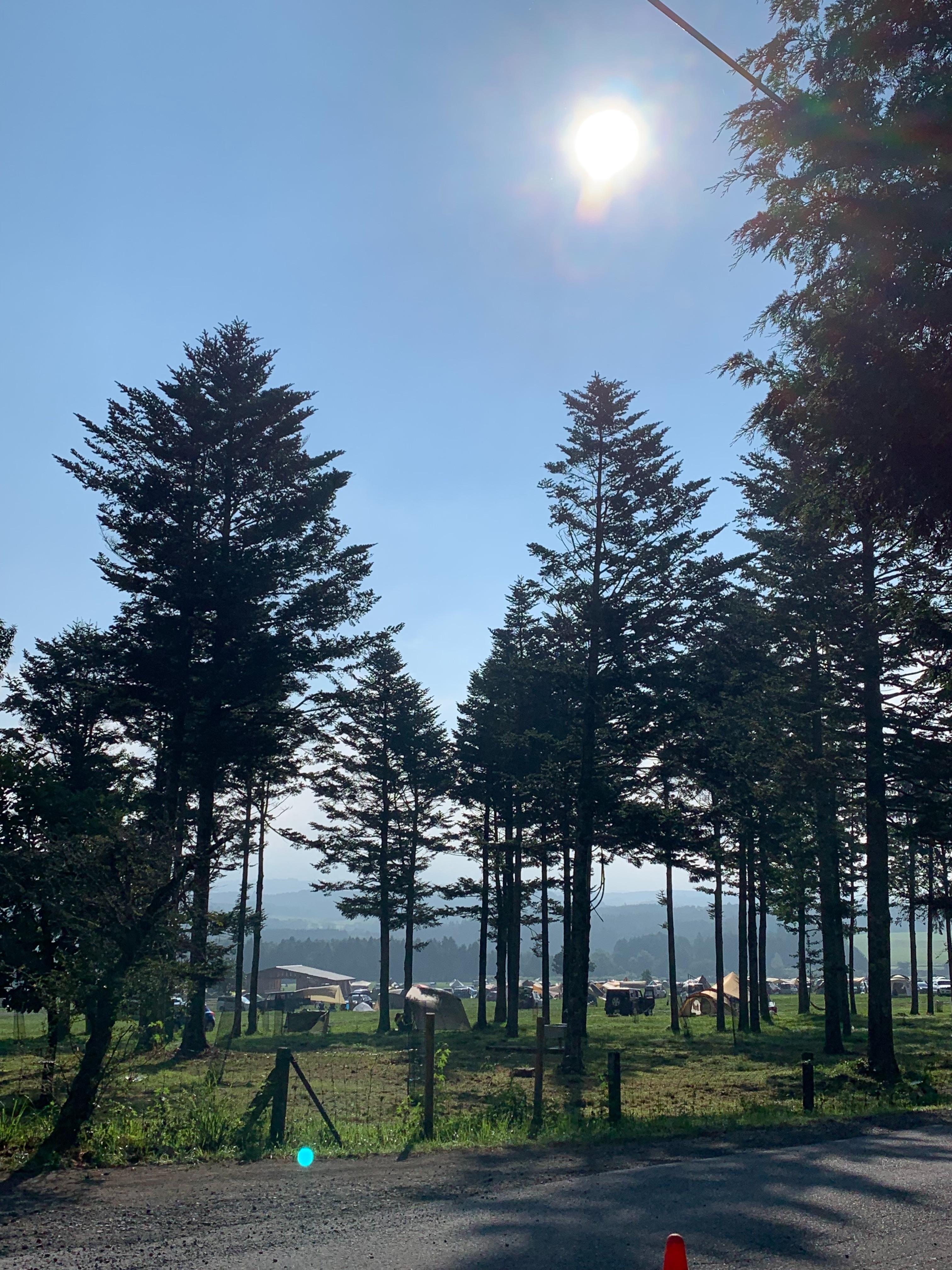 f:id:gorogoro_camp:20190812182830j:image