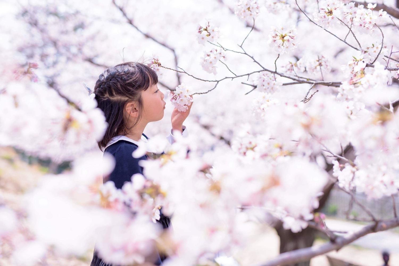 f:id:gorokuichi:20190628111621j:plain