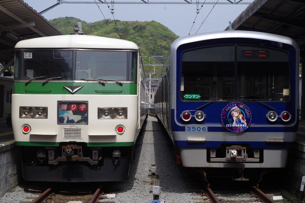 f:id:goronto_akebono:20190109003521j:plain