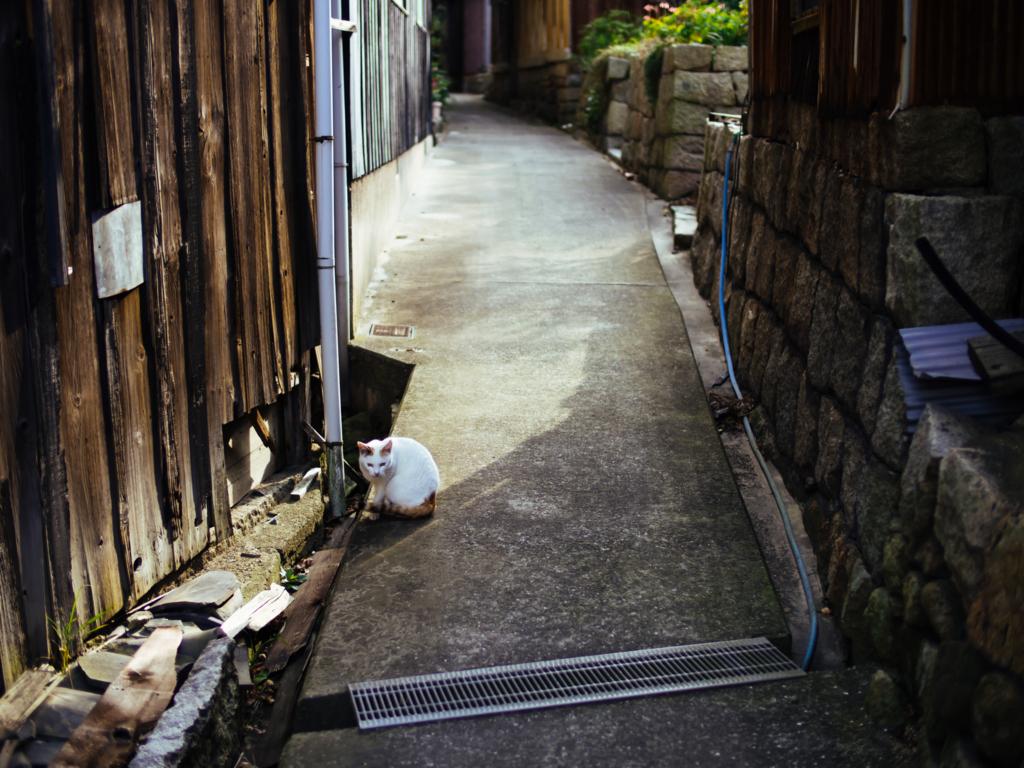 f:id:gorotaku:20171225135604j:plain