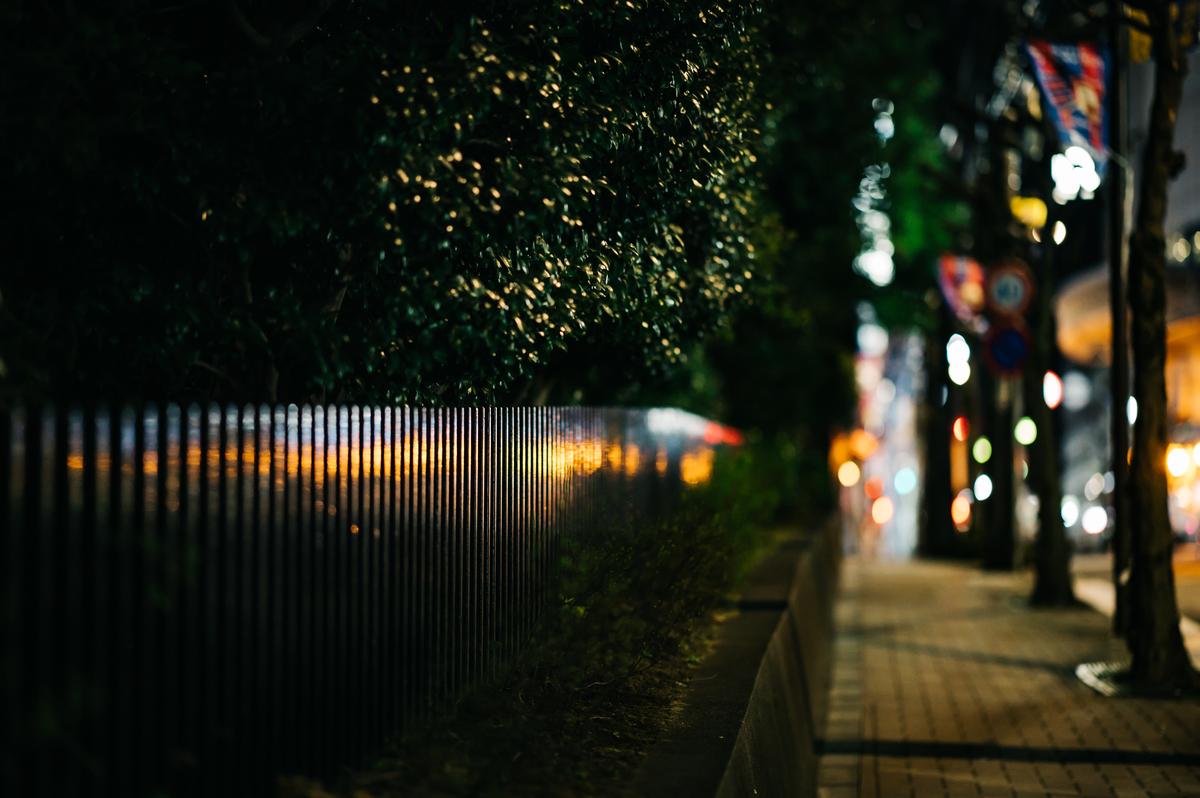 f:id:gorotaku:20190321232323j:plain