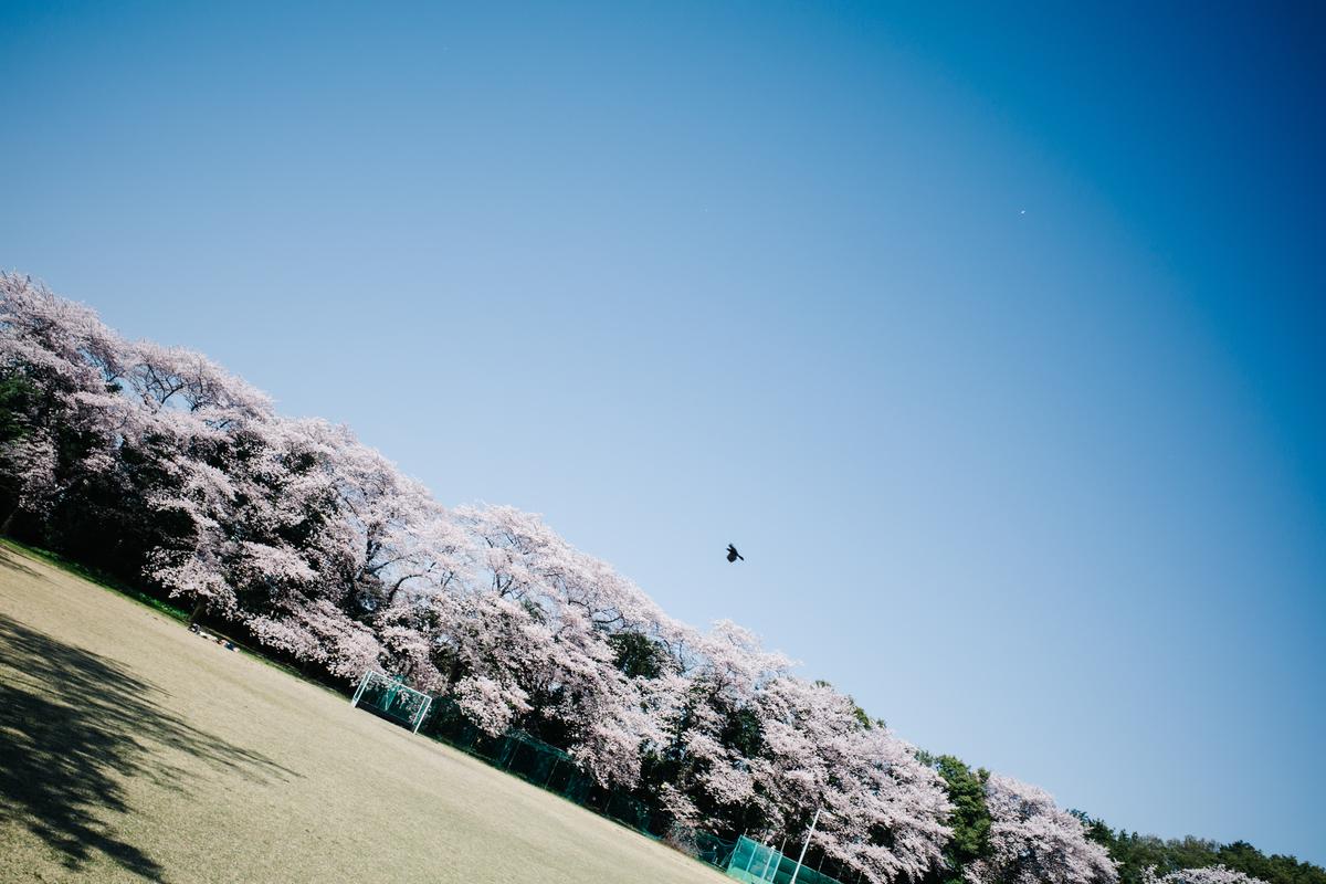 f:id:gorotaku:20191121171707j:plain