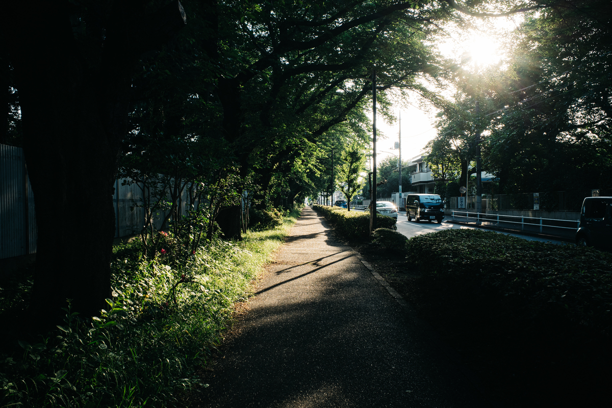 f:id:gorotaku:20200609173541j:plain