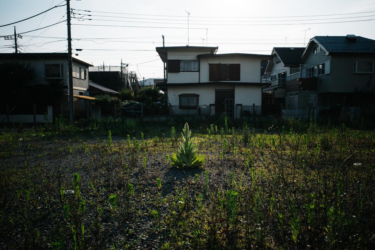f:id:gorotaku:20200617171553j:plain