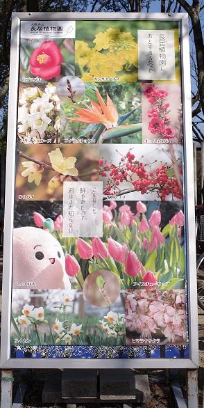 f:id:goryokyoki:20170201235829j:plain