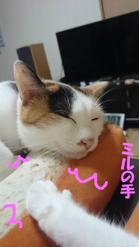 f:id:gosaku13:20180620222836j:image