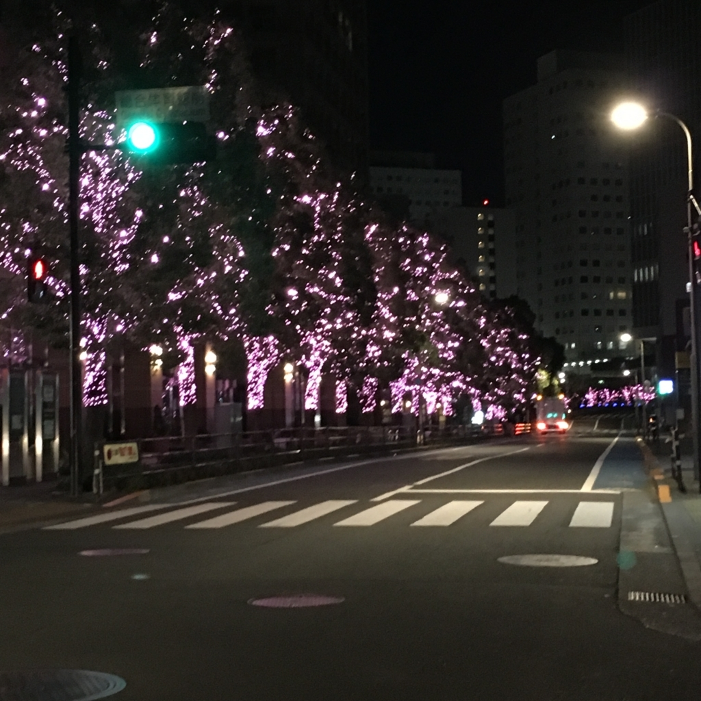 f:id:gotanda-kikou:20180101204202j:plain